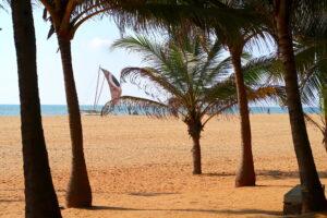 strand-negombo-sri-lanka