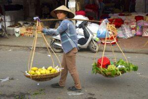 transport-av-mat-hanoi