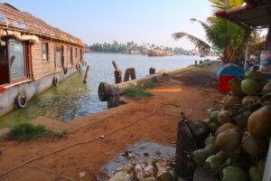 stopp-shopping-backwaters