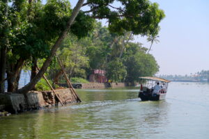 man-med-bat-backwaters-kerala
