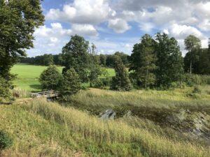 ruin-toftaholms-herrgard