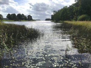 toftaholms-herrgard-vacker-natur