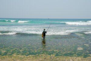 styltfiskare-sri-lanka