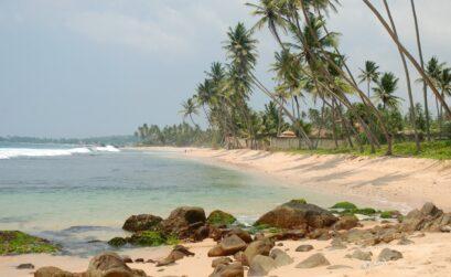 strander-sri-lanka
