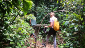 bukit-lawang-orangutang-spotting-sumatra