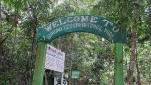 gunung-leuser-national-park-sumatra