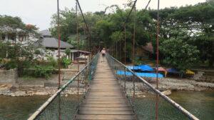 orangutang-spotting-bukit-lawang